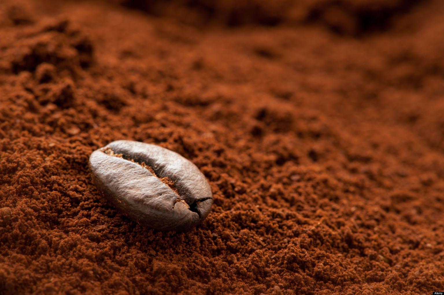 Cà phê bột được rất nhiều người yêu thích hiện nay