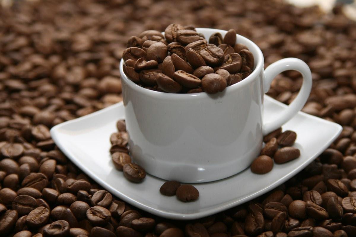 Cà phê hạt nguyên chất cần có quy trình sản xuất đảm bảo