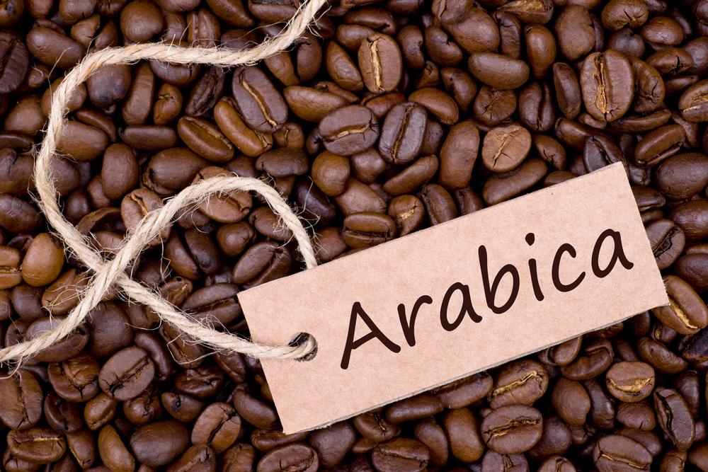 Cà phê Arabica rất tốt cho sức khỏe người dùng
