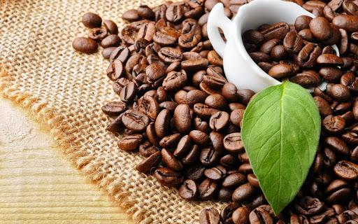 Cà phê Arabica là loại cà phê phổ biến trên thị trường hiện nay