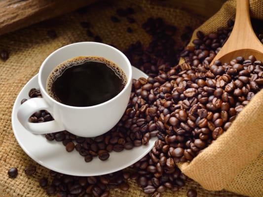 Cà phê Moka cần được chăm sóc kỳ công