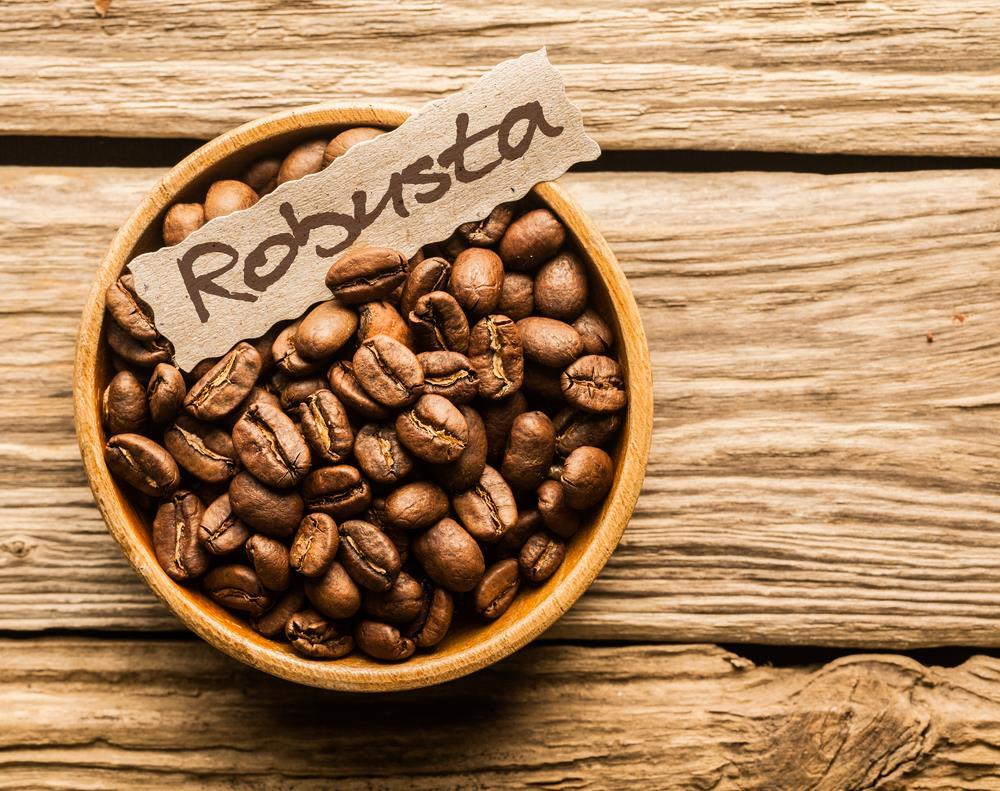 Có mấy loại cà phê phổ biến hiện nay ưa dùng
