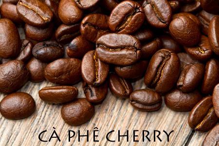 Có mấy loại cà phê phổ biến hiện nay được sử dụng